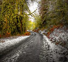 One Cool Road by Charles & Patricia   Harkins ~ Picture Oregon