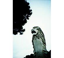 Merlion - Lomo Photographic Print