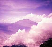 Purple Haze - Lomo by chylng