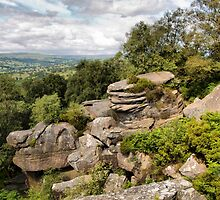 Brimham Rocks . by Irene  Burdell
