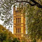 Houses of Parliament - Victoria Tower (2) by Andy Burke