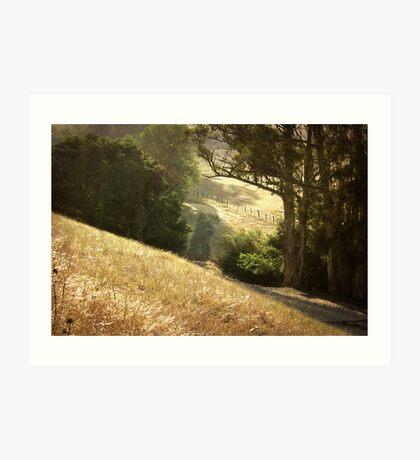 Along the Path Art Print