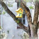Crooked Bird House by Susan Savad