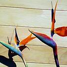 1489-exotic flowers by elvira1