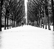 BLACK ON WHITE by Richard  Lane