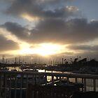 Oceanside Harbor by photosbyamy