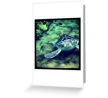 San Diego Zoo Greeting Card