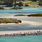 Wagonga Inlet Colours Narooma by Brett Thompson