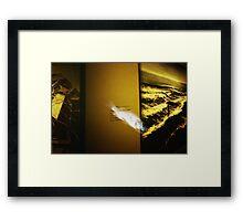 Art Fish - Lomo Framed Print
