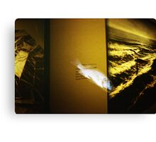 Art Fish - Lomo Canvas Print