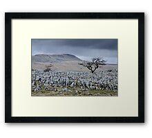 Whernside & the Limestone Fields, Yorkshire Dales National Park Framed Print