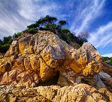 Cliff Face. by Bette Devine