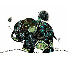 The Elephant and the Peacock Photographic Print