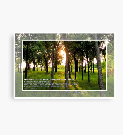 And God Said. . . Canvas Print