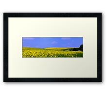 The Yellow Fields of Home Framed Print