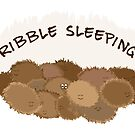 Tribble sleeping? by Emma Harckham