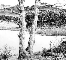 Windermere from Ambleside by Emma Tiley