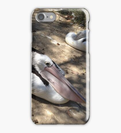 Two Pelicans Resting iPhone Case/Skin