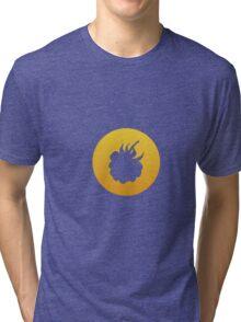 Summertime: Fruit 1 Tri-blend T-Shirt