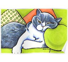 Cozy Spot - Bicolor British Shorthair Poster