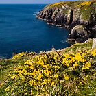 St Non's Bay Pembrokeshire by mlphoto