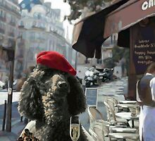 A Poodle in Paris by Laura Toth