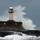 Stormy Seas by partridge