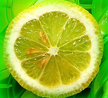 Lemon Slice by ©The Creative  Minds