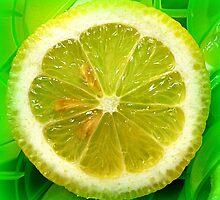 Lemon Slice by ©The Creative  Minds