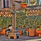 Pondering In Tlaquepaque Village  by Diana Graves Photography