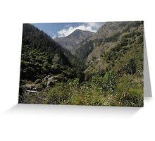 Himalayan beauty Greeting Card