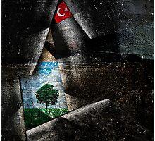 Gezi Park Photographic Print