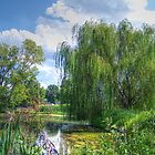 Willow Beside The Lake by James Brotherton