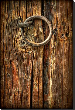 Knock on Wood by Evelina Kremsdorf