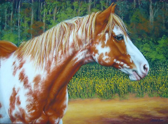 Overo Paint Horse-Colourful Warrior by Margaret Stockdale