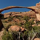the landscape arch by supergold