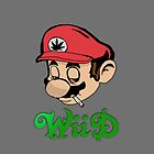 Mario Weed WiiD iPhone Case by Kerrisaurus