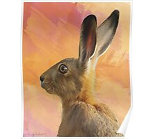 Wild Hare Poster