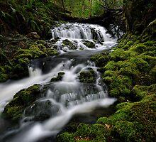 Quail Cascades by Robert Mullner