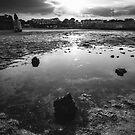 Sydney Parade Beach by Alessio Michelini