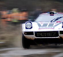 Lancia Stratos HF Rally Car by redleg