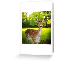 Little deer Greeting Card