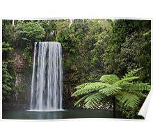Millaa Millaa, Queensland, Australia.  Poster