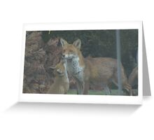 FOX AND HER VIXEN - SOFT FOCUS Greeting Card