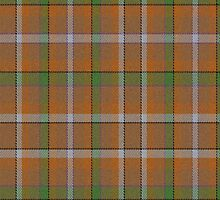 02574 Onondaga County, New York E-fficial Fashion Tartan Fabric Print Iphone Case by Detnecs2013