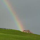 Rainbow in Halifax by Heather Eeles