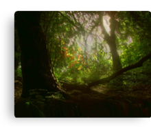 Blaise Woods Canvas Print