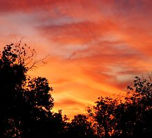 Texas Sky at Sunset by Sonteeg