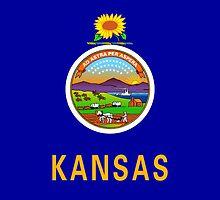 Smartphone Case - State Flag of Kansas - Horizontal by Mark Podger