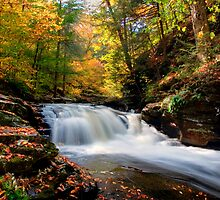 Conestoga Falls On Kitchen Creek in the Fall by Gene Walls